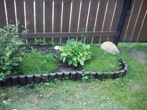 вот так пеньки смотрятся в саду